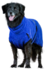 Hundebademantel Baumwolle Frottee blueberry blau dryup cape